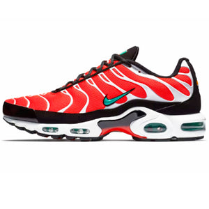 "Nike Air Max Plus ""Dolphins"""