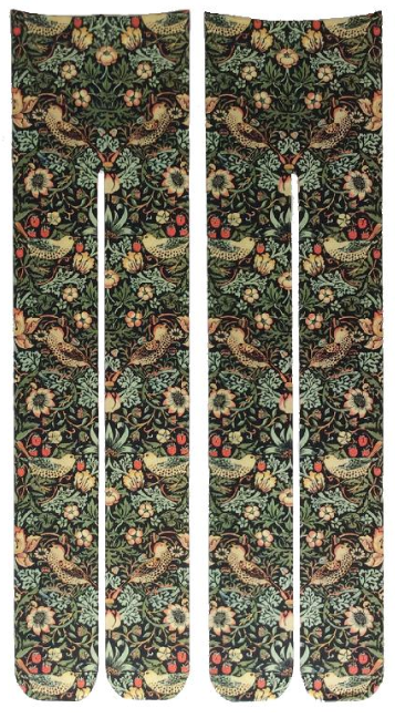 Tabbisocks Bird and Strawberry by William A. Morris