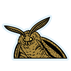 "Moth Meme 6"" Window Sticker"