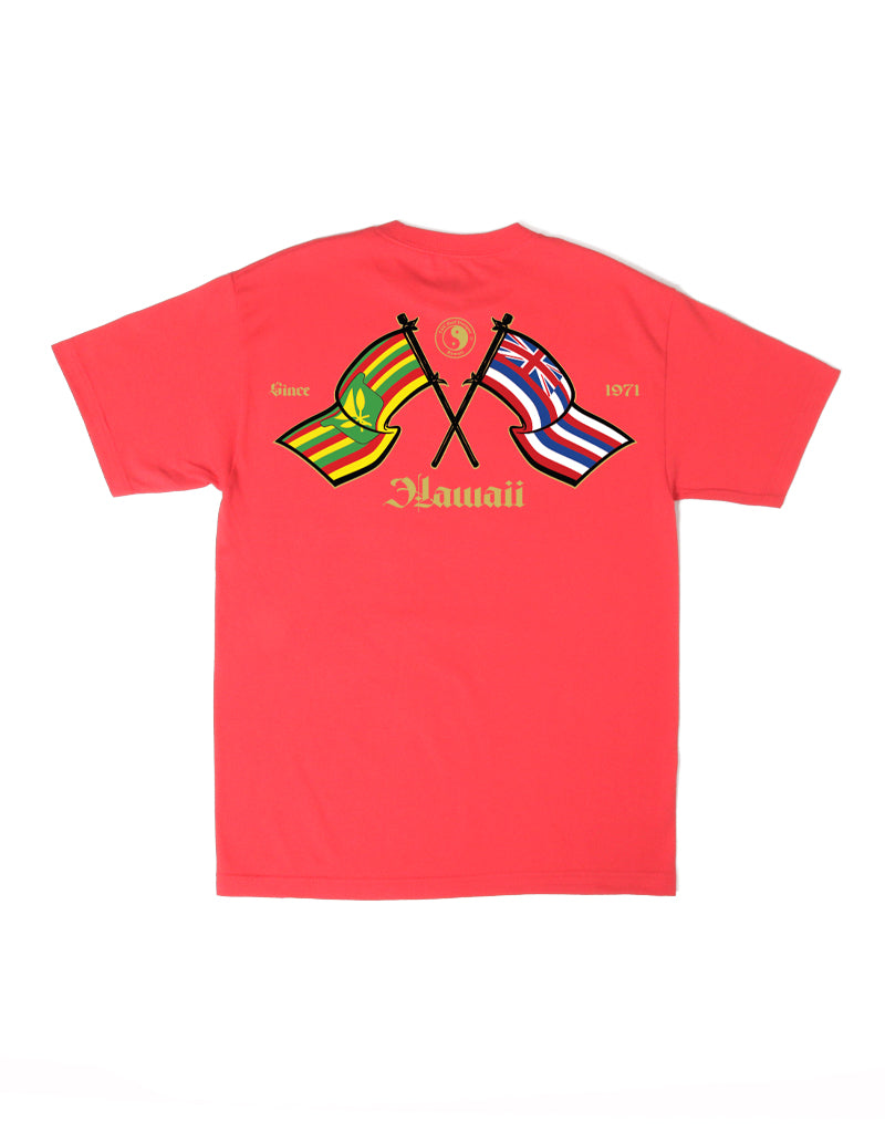 T&C Surf Designs T&C Surf Hawaii Flags Tee, S / Red