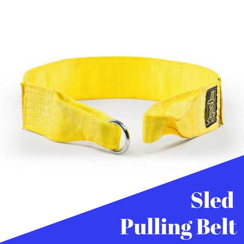 Upper Body Sled Strap