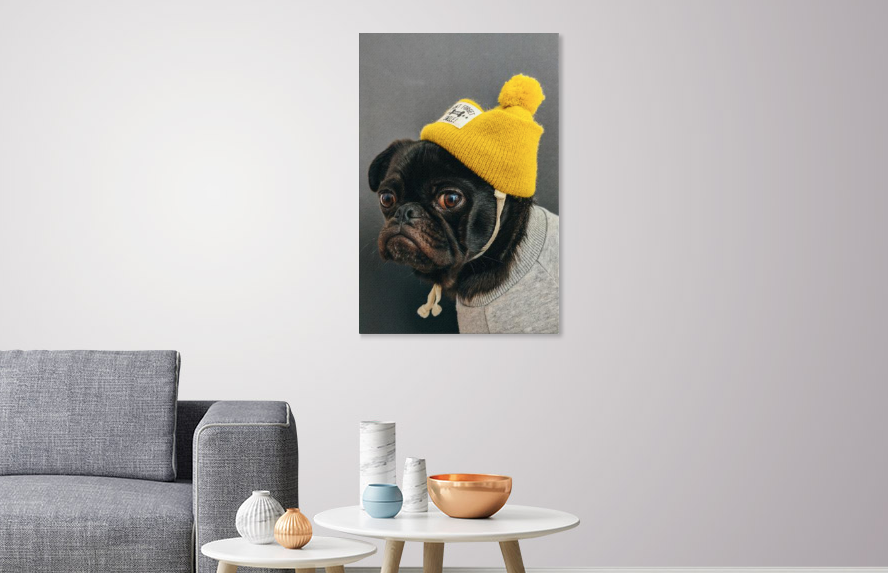 My Human Dresses Me canvas print