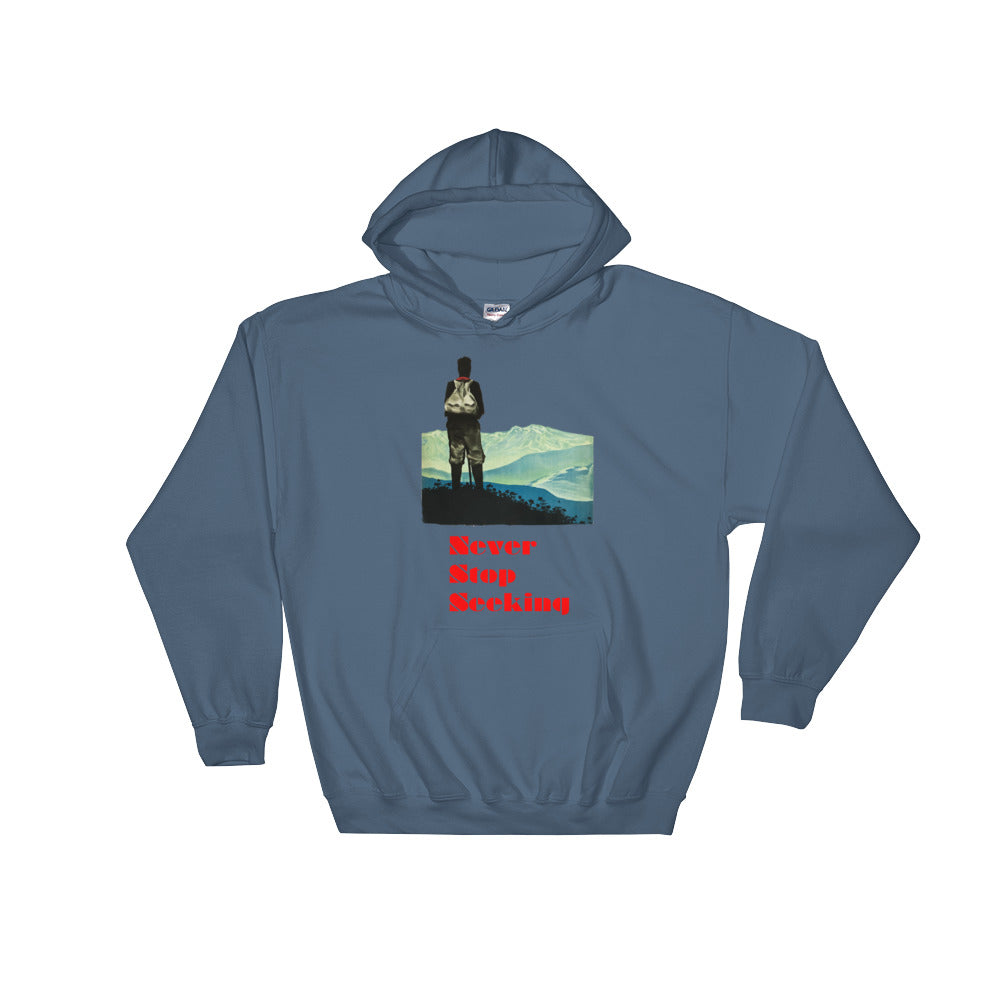 Never Stop Seeking Men's Hooded Sweatshirt