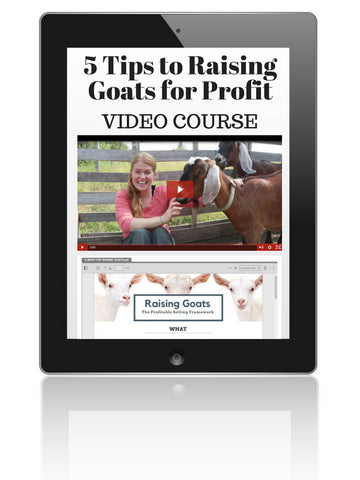 Raising Goats for Profit: 5 Tips Free Video Course