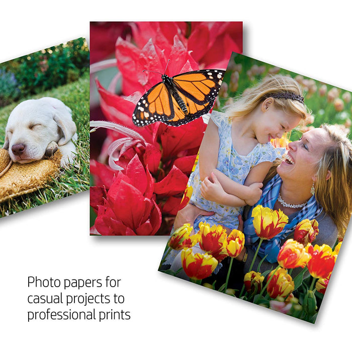 HP Everyday Glossy Photo Paper-100 sheet/4 x 6 in (CR759A)