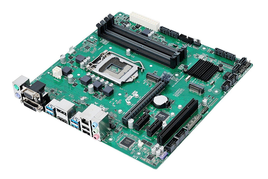 ASUS PRIME B250M-C/CSM LGA1151 DDR4 DP HDMI DVI VGA M.2 mATX Motherboard B250 chipset with USB 3.1 - V&L Canada