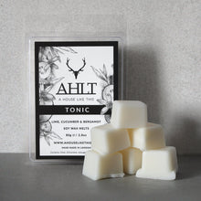 TONIC | Lime, Cucumber & Bergamot | Soy Wax Melts Wax Melt A House Like This