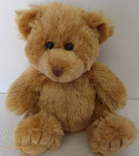 cuddly bear, teddy bears picnic, vintage dressed bear, Australian teddy bears, soft toys, plush, vintage collection, soft toys