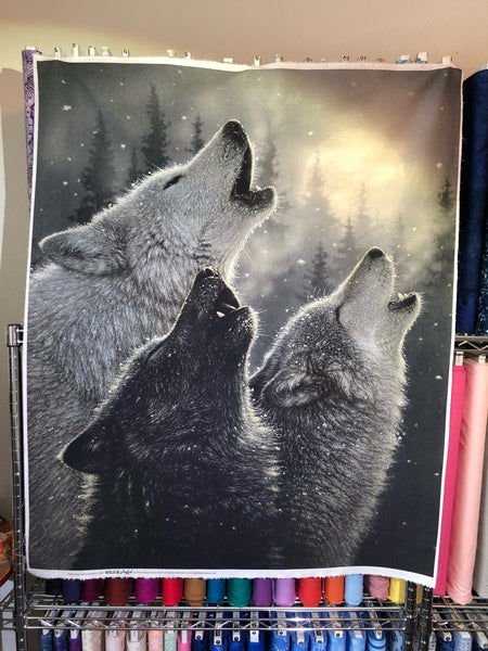 Wild and Playful Wolves Panel