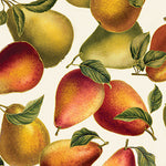 Elegant Pears Cream Harvest Gold Metallic