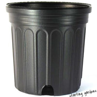 1 Gallon Nursery Pot (Qty.20), Trade Gallon Black Nursery Container, 6.5 inch