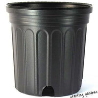 1 Gallon Nursery Pot (Qty. 100), Black Trade Gallon, 6.5 Inch-Starting Gardens