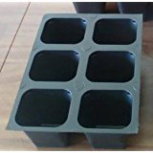 Seedling  Starter Trays, 144 Cells: (24 Trays) Plus 5 Plant Labels, Large Cells