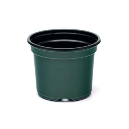 "8 Inch Azalea Pot, (Qty.10), 8"" Plastic, Green Co-ex Greenhouse Container, sp800-Starting Gardens"