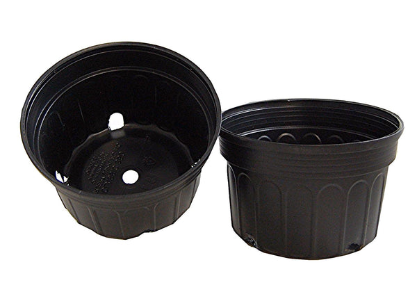Mum Pan, (Qty. 50) 8x5 Black Nursery and Greenhouse Pot, Bulb Pot, Black C350