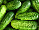 National Pickling Cucumber, 1/2 Ounce, Approx 400-600 Seeds, NON GMO
