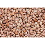 PInto Bean Seed, 1 Pound Pack, Heirloom, Non GMO, Packed in Resealable Foil Pack-Starting Gardens
