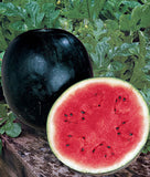 Sugar Baby Watermelon Seed, 1/2 Ounce Pack, Approx. 150 Seeds, NON GMO, USA
