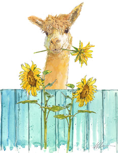 Alpaca On Fence Watercolor Print