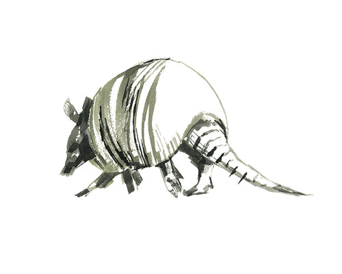 Armadillo BW Watercolor Print