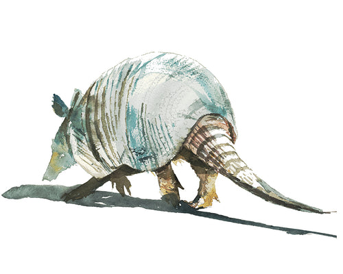 Armadillo Hustle Watercolor Print