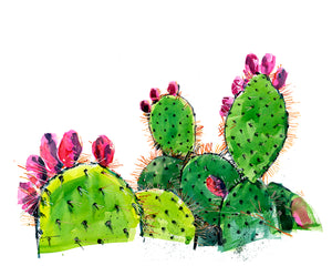 Prickly Pear Bright Watercolor Print