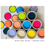 Wise Owl Chalk Synthesis Paint Sample Pots