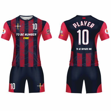 custom Pro t-shirt jerseys customize your own soccer jersey with your tean logo,name ,number