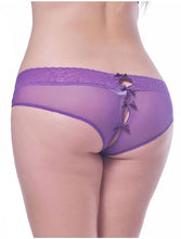 Plus Size Sexy Holiday Peek A Boo Back Mesh Crotchless Valentines Panty