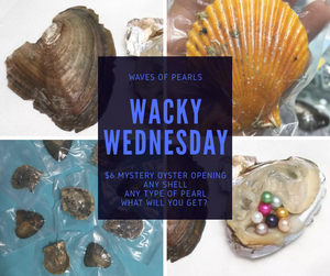 Wacky Wednesday Oyster Pull