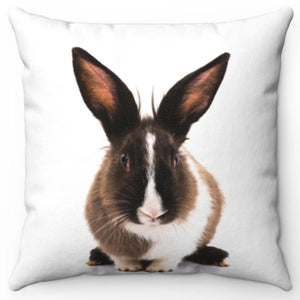 "Bunny Rabbit 16"" Or 18"" Square Throw Pillow"