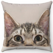 "Load image into Gallery viewer, Curious Kitten Eyes 16"" Or 18"" Square Throw Pillow"