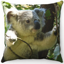 "Load image into Gallery viewer, Kuddly Australian Koala 16"" Or 18"" Square Throw Pillow"