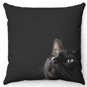 "Kitty Looking Up 18"" x 18"" Throw Pillow Cover"