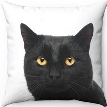 "Load image into Gallery viewer, Midnight The Black Cat 18"" x 18"" Throw Pillow Cover"