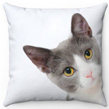"Load image into Gallery viewer, Kermit The Peeking Cat 16"" Or 18"" Square Throw Pillow"