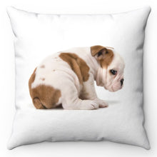 "Load image into Gallery viewer, Daisy Duke The Baby Bulldog 18"" x 18"" Throw Pillow Cover"