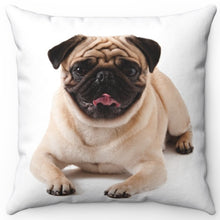 "Load image into Gallery viewer, Posing Pug Pup 16"" Or 18"" Square Throw Pillow"