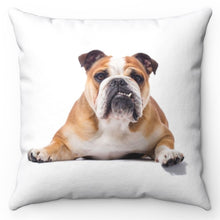 "Load image into Gallery viewer, Posing Bulldog 18"" x 18"" Throw Pillow Cover"
