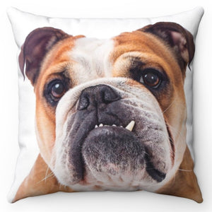 "Brutus The Bulldog 18"" x 18"" Throw Pillow"