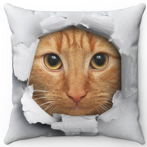 "Peek A Boo Cat 16"" Or 18"" Square Throw Pillow"