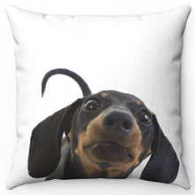 "Load image into Gallery viewer, Curious Dachshund Snoot 16"" Or 18"" Square Throw Pillow"