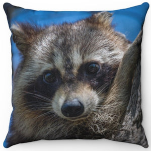 "Trashcan Panda Raccoon 16"" Or 18"" Square Throw Pillow"