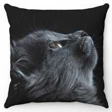 "Load image into Gallery viewer, Star Gazing Gray Cat 18"" x 18"" Throw Pillow Cover"