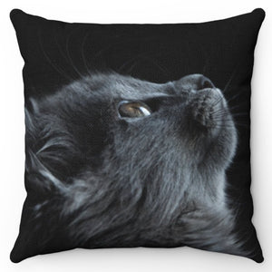 "Star Gazing Gray Cat 18"" x 18"" Throw Pillow Cover"