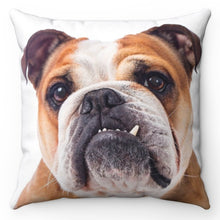 "Load image into Gallery viewer, Brutus The Bulldog 18"" x 18"" Throw Pillow"