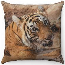 "Load image into Gallery viewer, Mighty Muddy Tiger 16"" Or 18"" Square Throw Pillow"