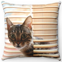 "Load image into Gallery viewer, Kitty Cat In The Blinds 16"" Or 18"" Square Throw Pillow"