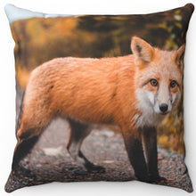 "Load image into Gallery viewer, Small Red Fox 16"" x 16"" Square Throw Pillow"