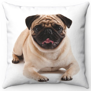 "Posing Pug Pup 16"" Or 18"" Square Throw Pillow"